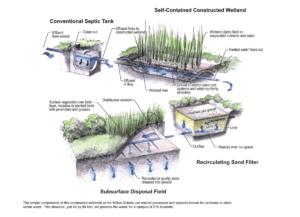 Przykład oczyszczalni typu Constructed Wetlands (Willow School)